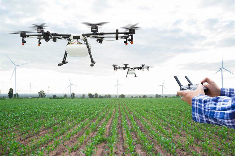 Drones escogen cereal que produzca bioetanol