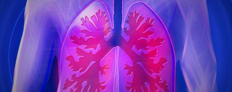 CSIC, prueba para tratamiento de la fibrosis pulmonar