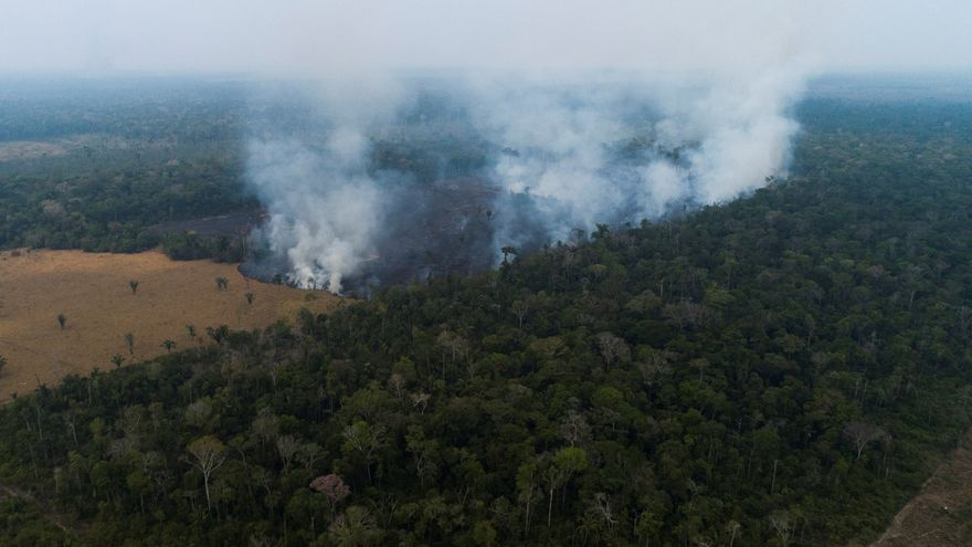 Algunas zonas del Amazonas ya emiten más CO2 del que absorben