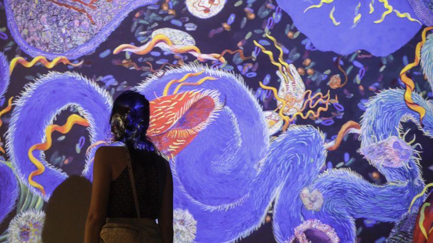 'Ciencia Fricción': una exposición para ampliar los límites de nuestra imaginación científica